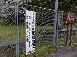 44 3月養福寺.jpg
