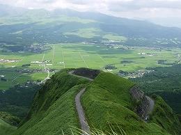 92 8月北山ヒゴタイ.jpg