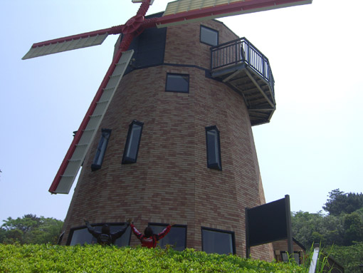 赤い羽根の風車.jpg