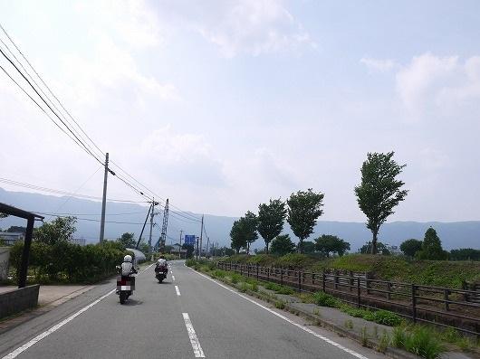P1210133.jpg