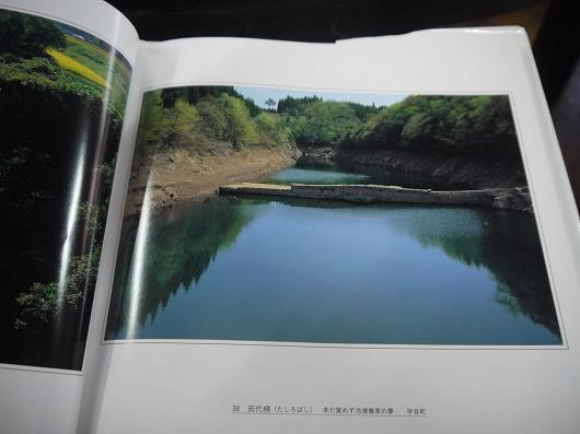 P1250123.jpg
