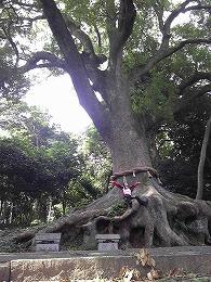 79  光岡八幡宮.jpg