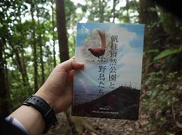 82  皿倉山(6月).jpg