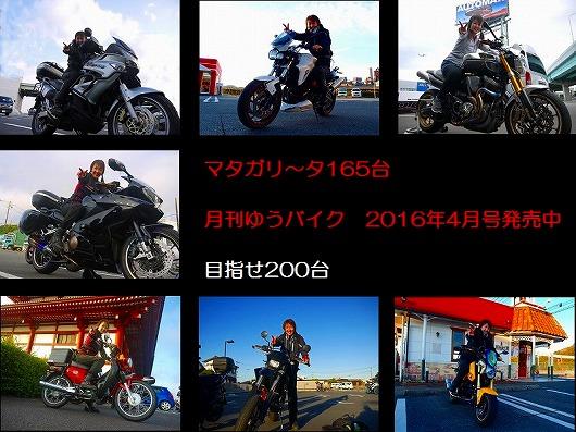 マタガリ~タ165台.jpg