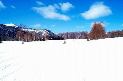 大雪原.jpg