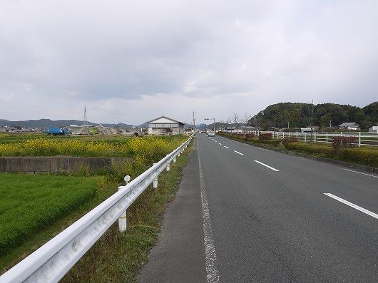 P1250736.jpg